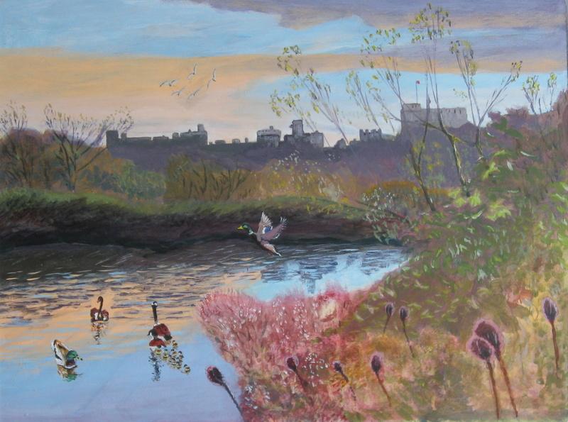 Arundel Castle from Wetlands Centre