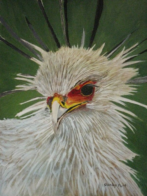 Painting of the head of a Secretary Bird