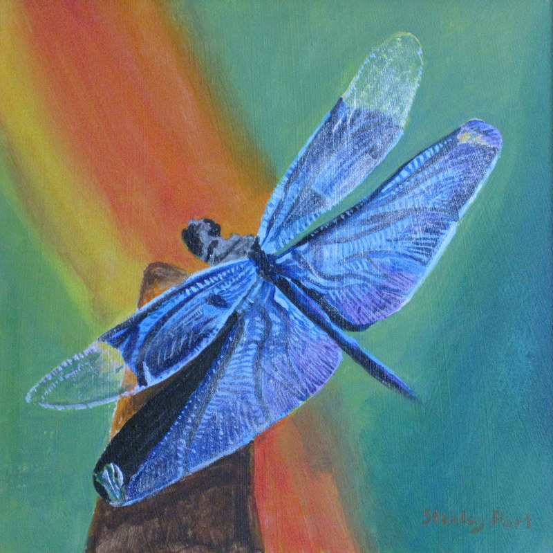painting of blue dragonfly