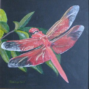 Painting of Red Dragonfly