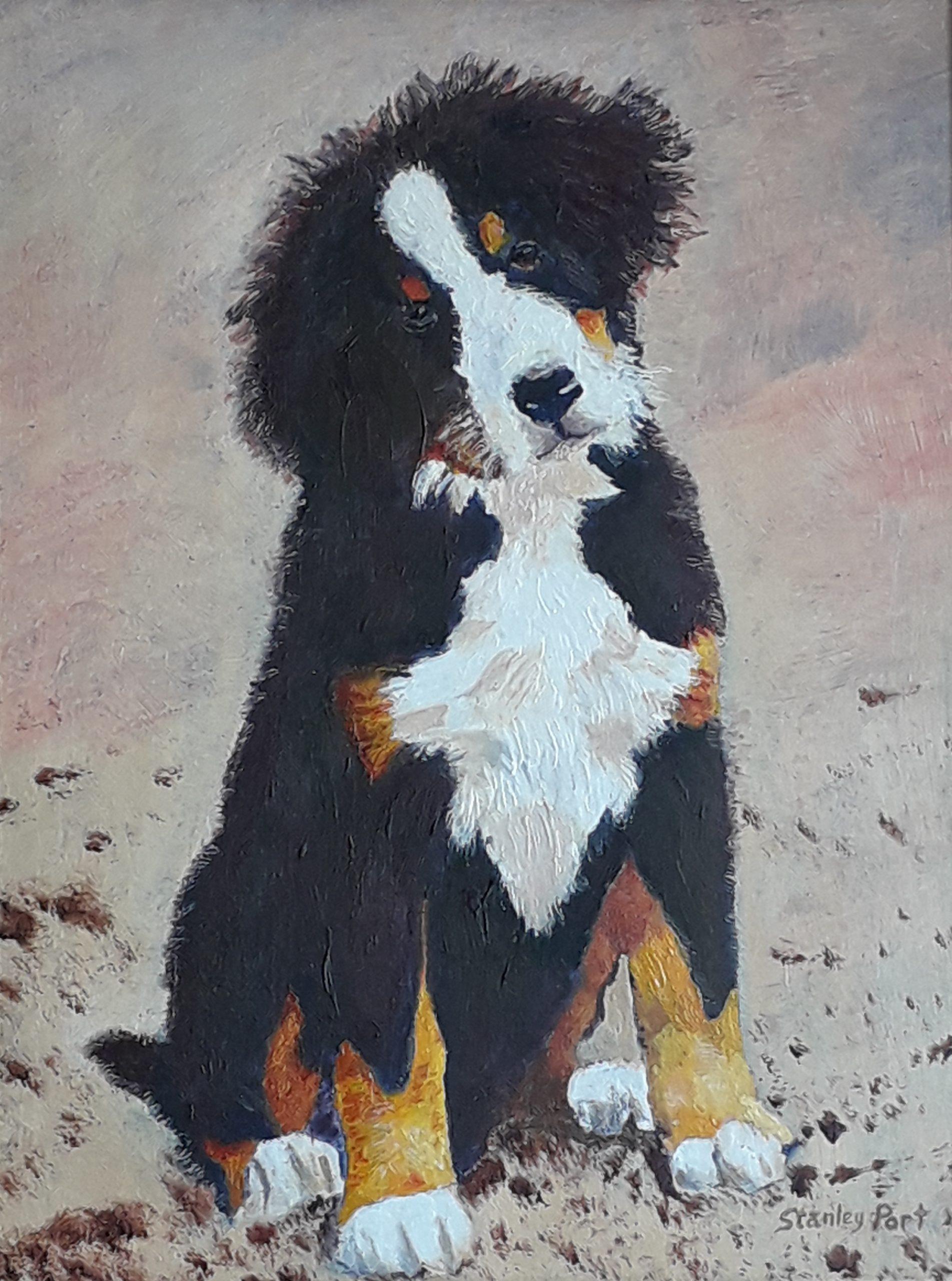 Portrait Paintings of Favourite Pets Sussex