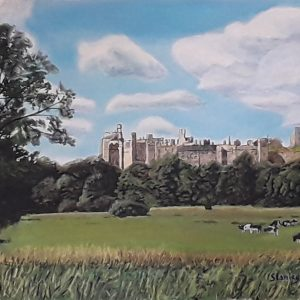 Arundel Castle across the Meadows